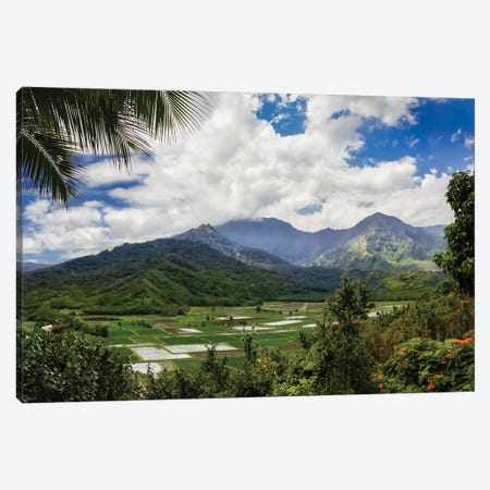 Hawaiian Overlook Canvas Print #JRP37} by Jonathan Ross Photography Canvas Wall Art