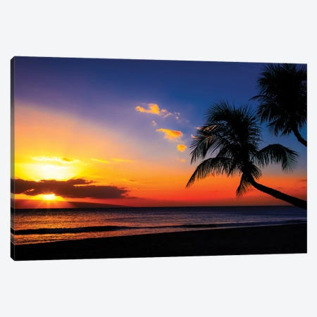 Leaning Into Sunset Canvas Print #JRP40} by Jonathan Ross Photography Canvas Artwork