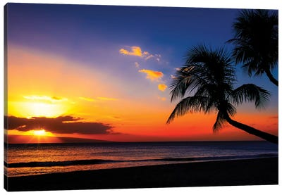 Leaning Into Sunset Canvas Art Print