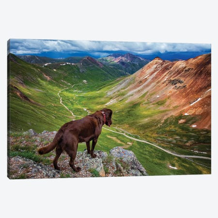 Looking Over The Edge Canvas Print #JRP45} by Jonathan Ross Photography Canvas Print