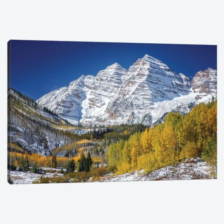 Aspen Peaks In Forest Canvas Print #JRP4} by Jonathan Ross Photography Canvas Art Print