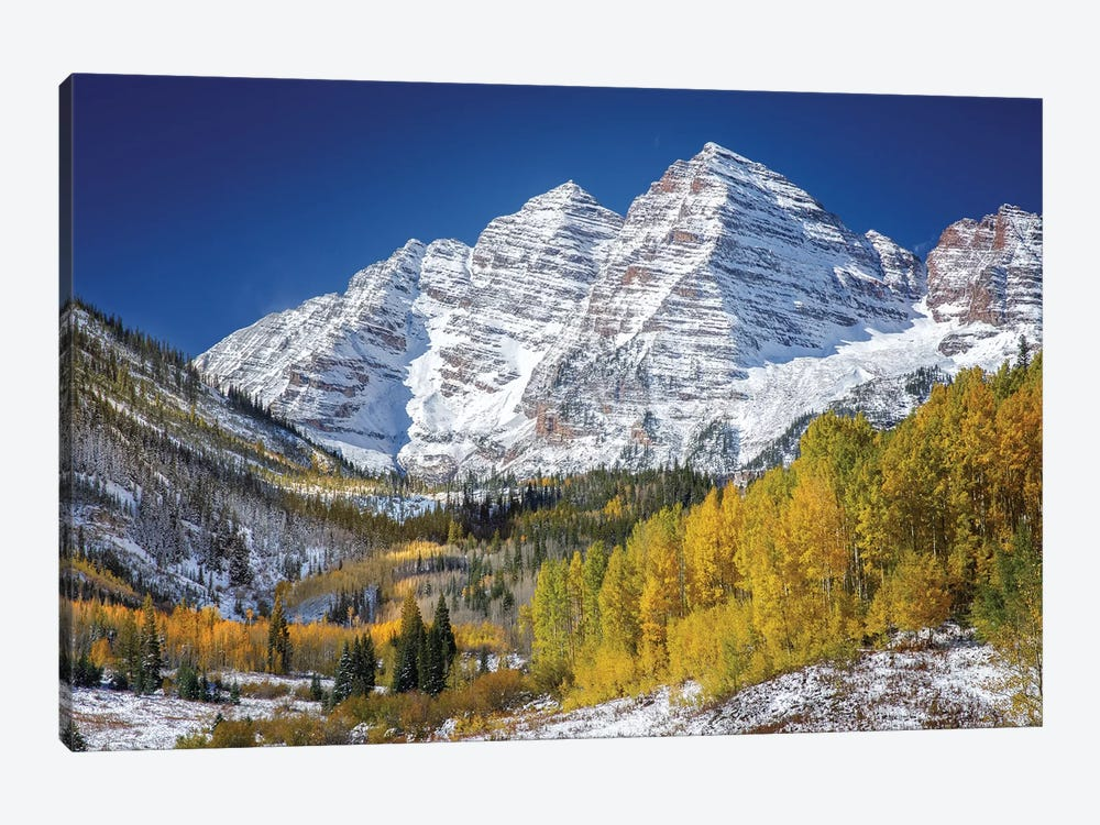 Aspen Peaks In Forest by Jonathan Ross Photography 1-piece Canvas Artwork