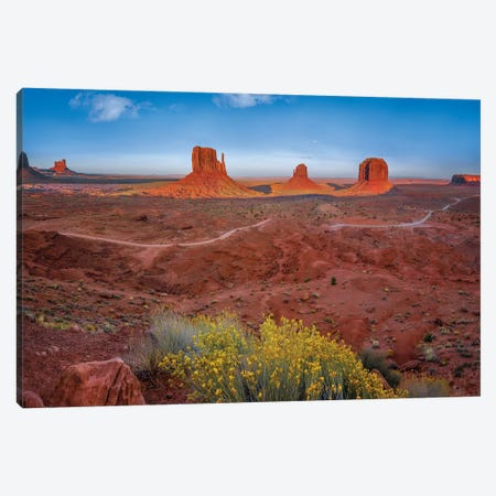 Mittens In The Desert Canvas Print #JRP53} by Jonathan Ross Photography Art Print