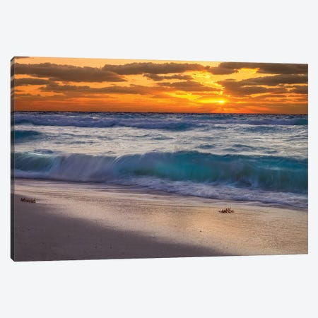 Morning Has Broken Canvas Print #JRP56} by Jonathan Ross Photography Canvas Art