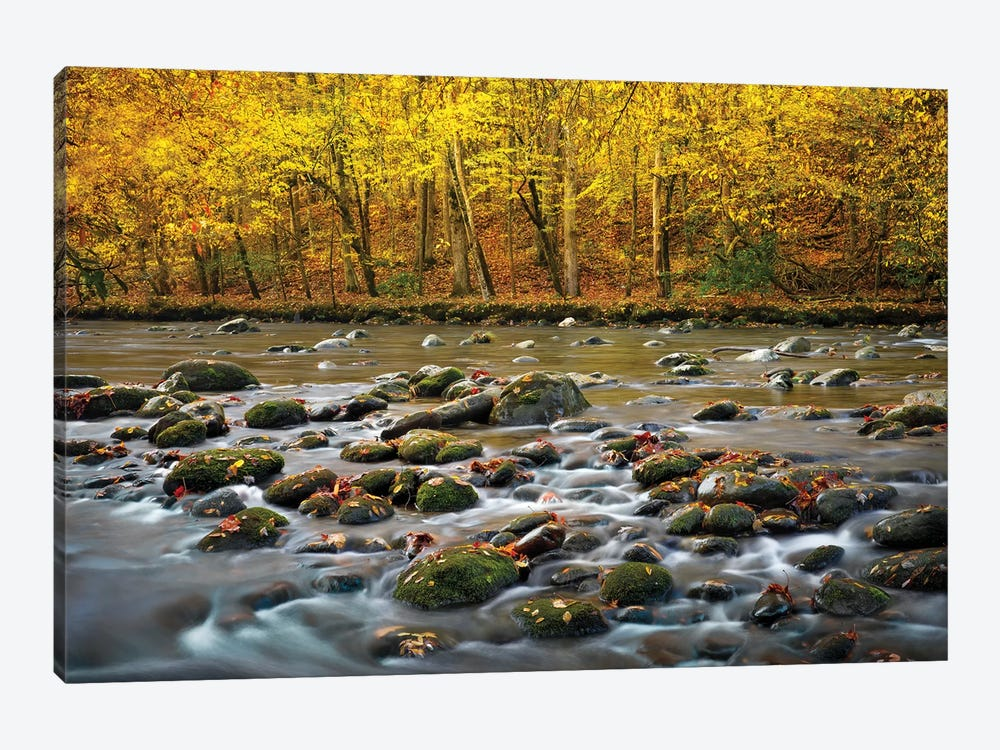 Mountain Stream In Autumn by Jonathan Ross Photography 1-piece Canvas Artwork