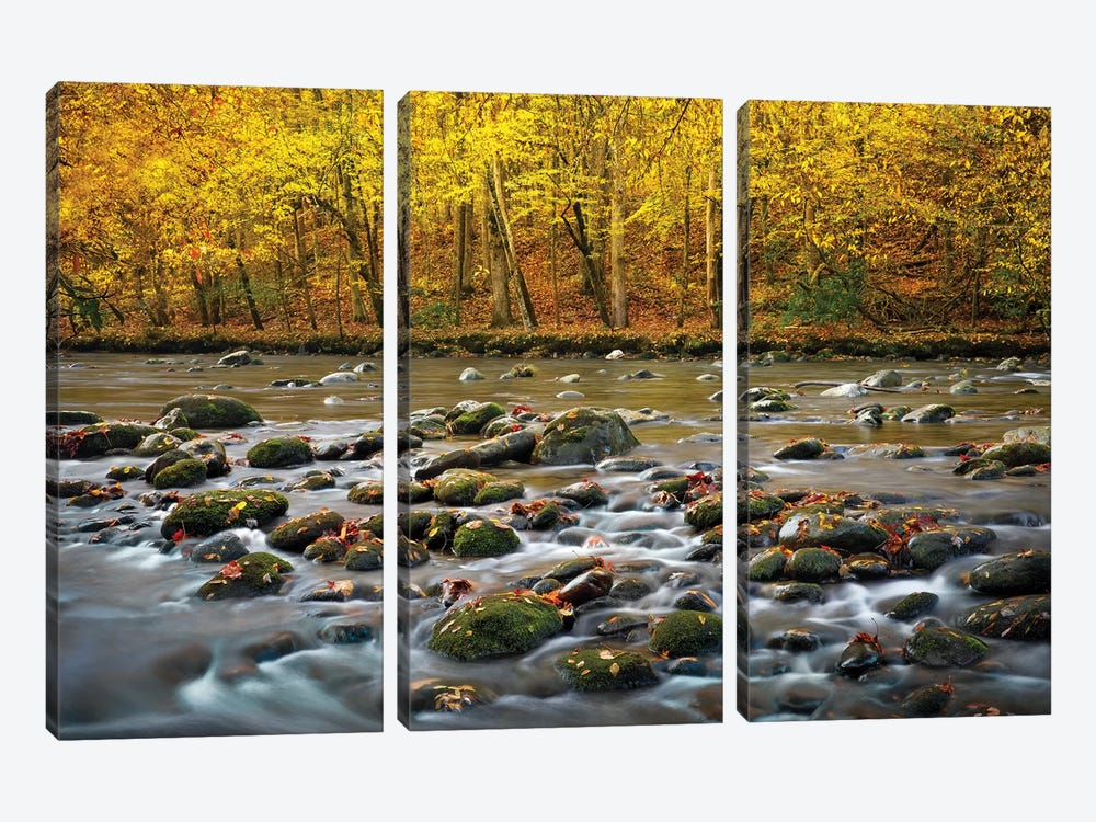 Mountain Stream In Autumn by Jonathan Ross Photography 3-piece Canvas Wall Art
