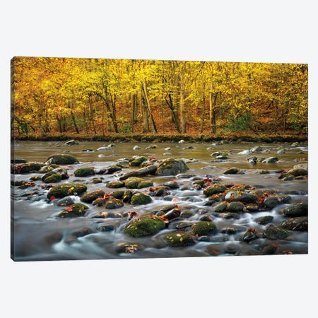 Mountain Stream In Autumn 3-Piece Canvas #JRP57} by Jonathan Ross Photography Canvas Artwork