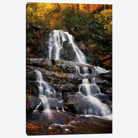 Autumn Falls Canvas Print #JRP5} by Jonathan Ross Photography Art Print