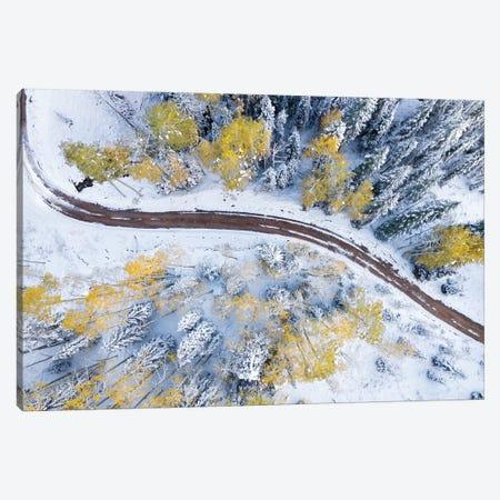 Roadway Through The Snowy Aspens 3-Piece Canvas #JRP73} by Jonathan Ross Photography Canvas Art Print
