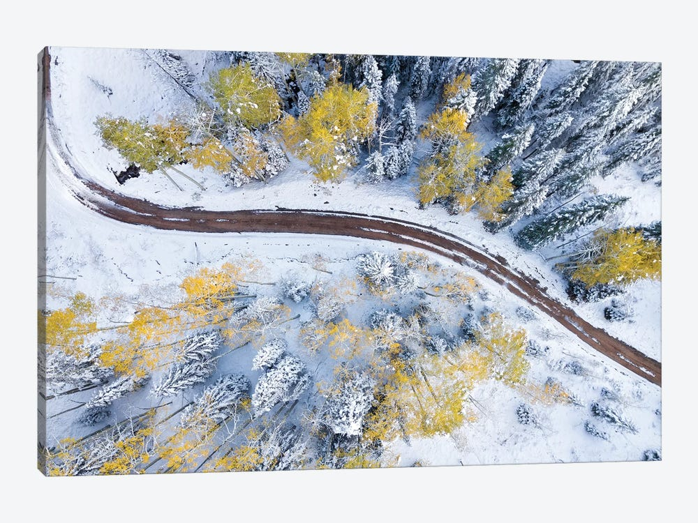 Roadway Through The Snowy Aspens by Jonathan Ross Photography 1-piece Canvas Art