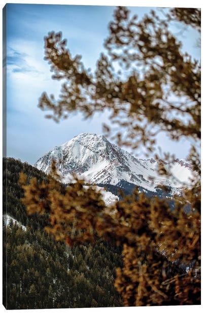 Rocky Mountain Glimpse Canvas Art Print