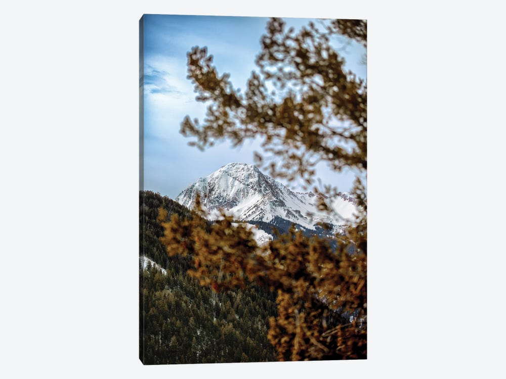 Rocky Mountain Glimpse 1-piece Canvas Art Print