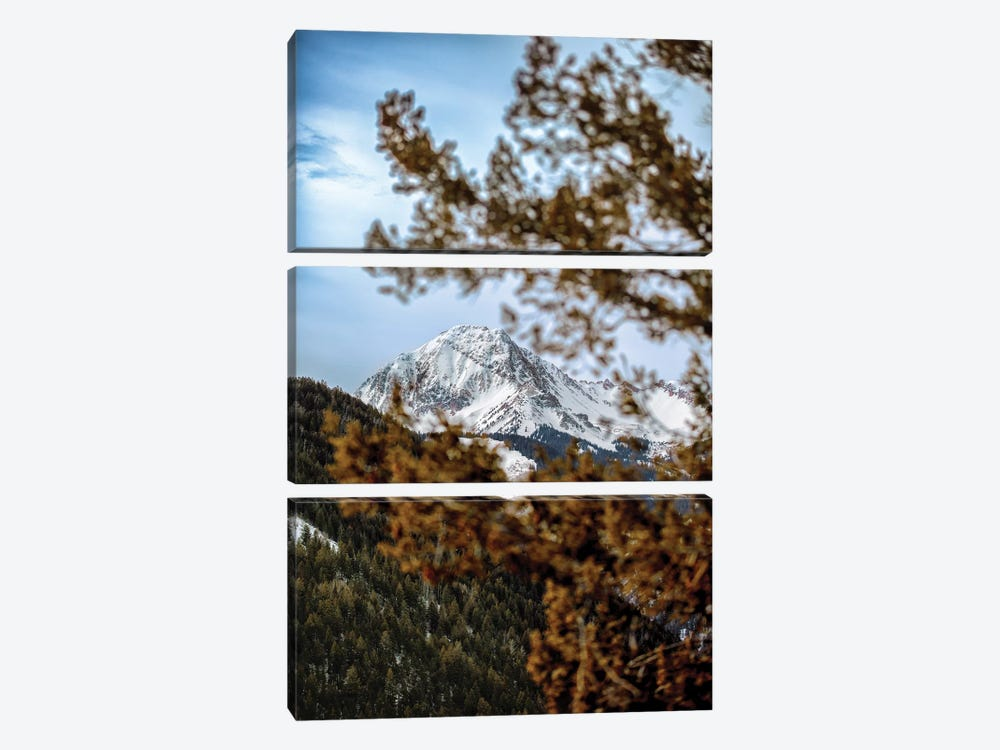 Rocky Mountain Glimpse 3-piece Canvas Art Print