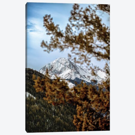 Rocky Mountain Glimpse Canvas Print #JRP76} by Jonathan Ross Photography Canvas Wall Art