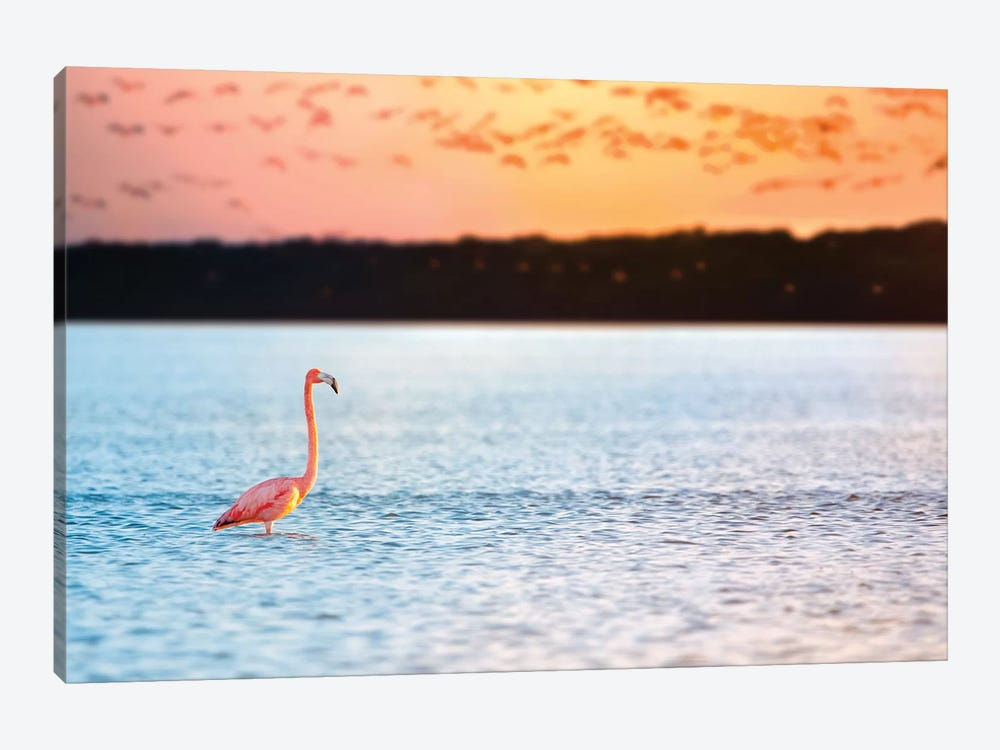 Standing Alone by Jonathan Ross Photography 1-piece Canvas Wall Art