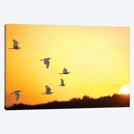 Sunset Formation 3-Piece Canvas #JRP96} by Jonathan Ross Photography Canvas Art