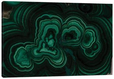 Curls Of Malachite Canvas Art Print