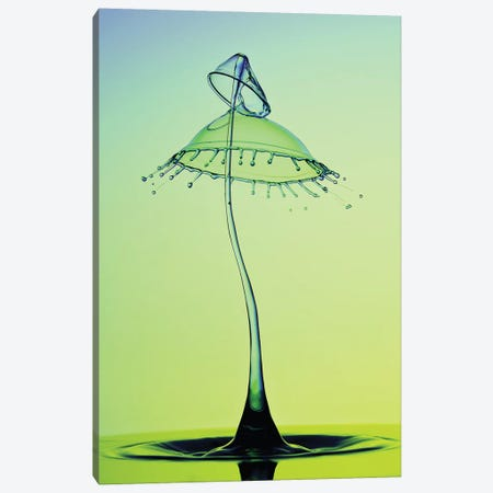 Double Umbrella Canvas Print #JRS21} by Jaroslaw Blaminsky Canvas Art Print
