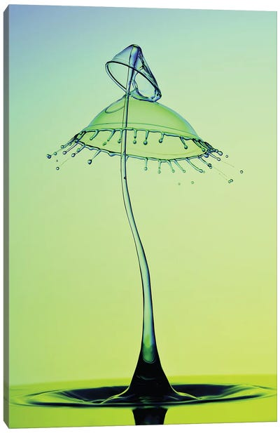 Double Umbrella Canvas Art Print