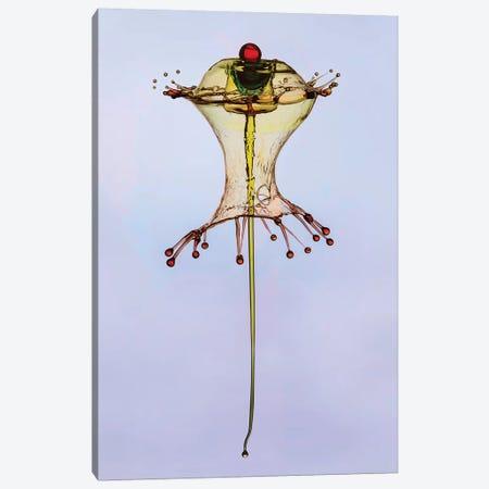 Golden Water Form Canvas Print #JRS27} by Jaroslaw Blaminsky Canvas Artwork
