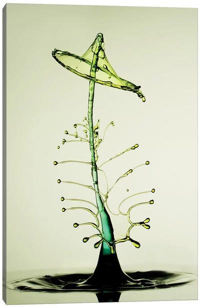 Green Happiness Canvas Art Print