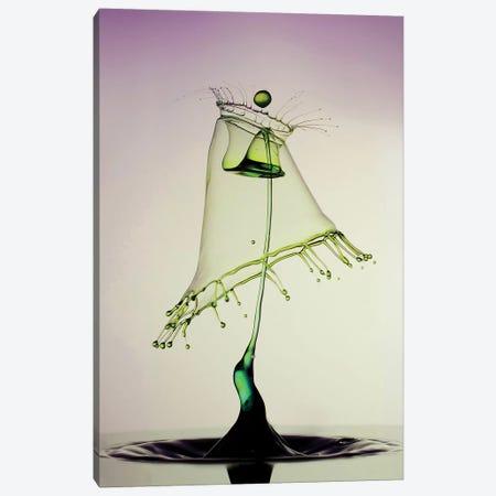 Green Hoods 3-Piece Canvas #JRS32} by Jaroslaw Blaminsky Canvas Art