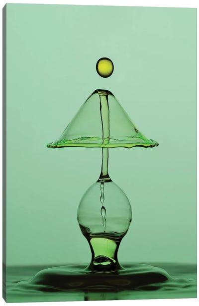 Green Water Lamp Canvas Art Print