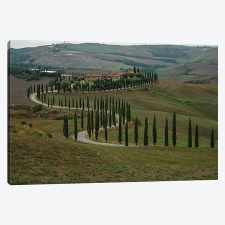 Italian Landscape With Cyprysses Canvas Print #JRS39} by Jaroslaw Blaminsky Canvas Artwork