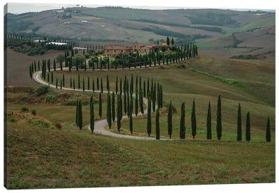 Italian Landscape With Cyprysses Canvas Art Print