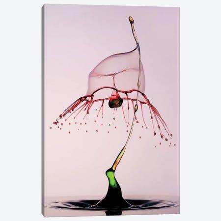 Pink And Green Water Hood Canvas Print #JRS52} by Jaroslaw Blaminsky Canvas Art