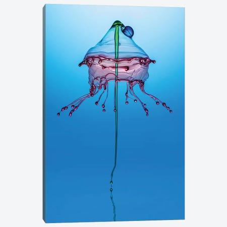 Blue Jellyfish Canvas Print #JRS5} by Jaroslaw Blaminsky Canvas Artwork
