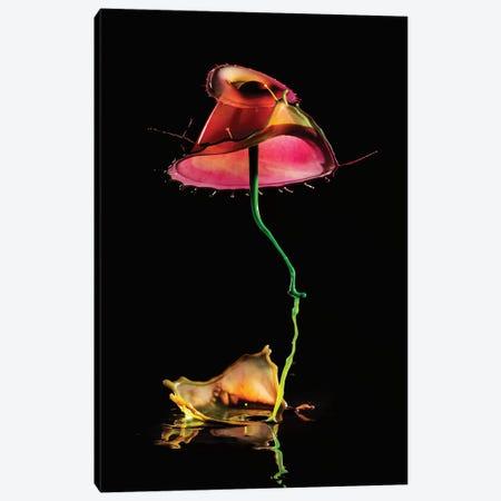 Red Water Mushroom 3-Piece Canvas #JRS66} by Jaroslaw Blaminsky Canvas Art