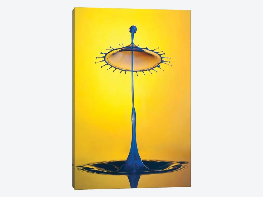 Blue Umbrella by Jaroslaw Blaminsky 1-piece Canvas Wall Art