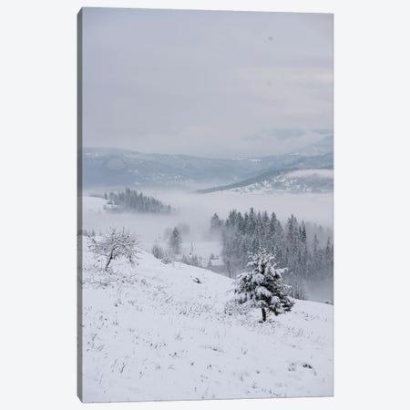 The First Snow 3-Piece Canvas #JRS80} by Jaroslaw Blaminsky Canvas Print