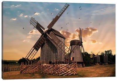 Windmills At Dawn Canvas Art Print
