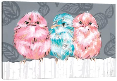 Bird Trio II Canvas Art Print