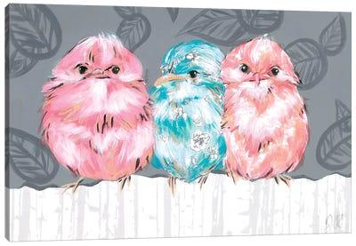Bird Trio II Canvas Art Print