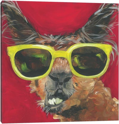 Dapper Animal IV Canvas Art Print