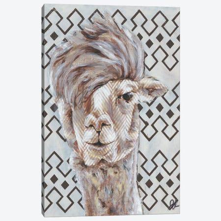 Animal Patterns II Canvas Print #JRU6} by Jennifer Rutledge Canvas Art