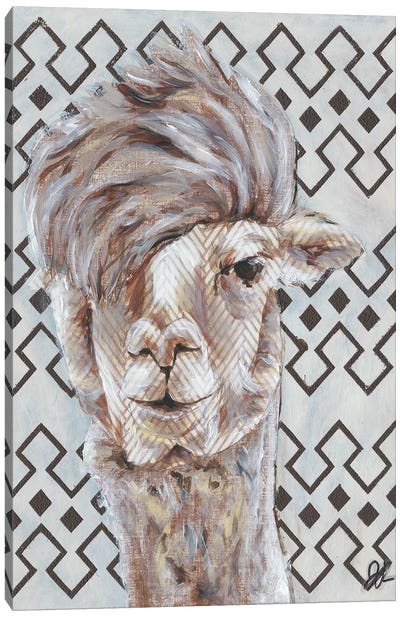 Animal Patterns II Canvas Art Print