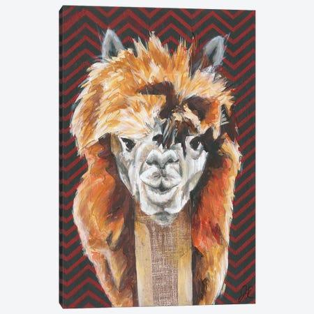 Animal Patterns III Canvas Print #JRU7} by Jennifer Rutledge Canvas Wall Art