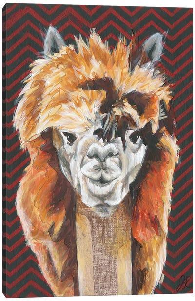 Animal Patterns III Canvas Art Print