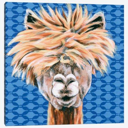 Animal Patterns IV Canvas Print #JRU8} by Jennifer Rutledge Canvas Art Print