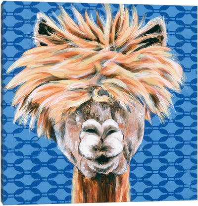 Animal Patterns IV Canvas Art Print