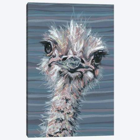 Animal Patterns V Canvas Print #JRU9} by Jennifer Rutledge Canvas Art Print