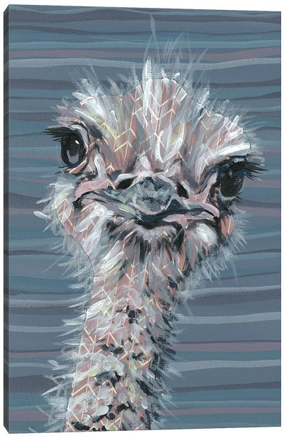 Animal Patterns V Canvas Art Print