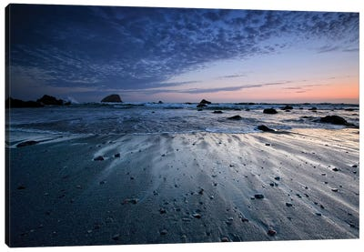 Tide Rushes Out Canvas Art Print