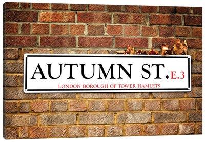 Autumn Street And Autumn Leaves Canvas Art Print