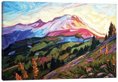 Mt Rainier Canvas Art Print