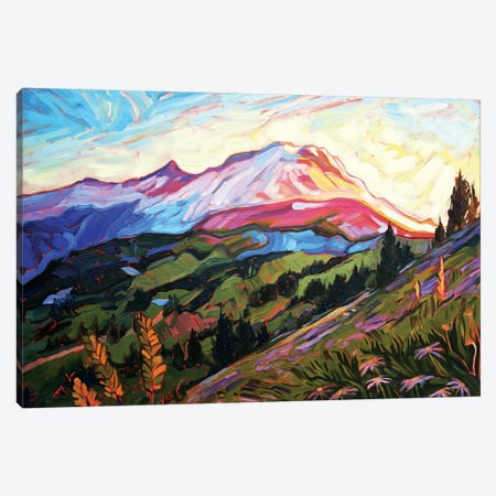 Mt Rainier Canvas Print #JSA12} by Jessica Johnson Art Print